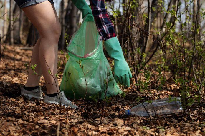 Sprzątanie lasu przez EKOPATROL