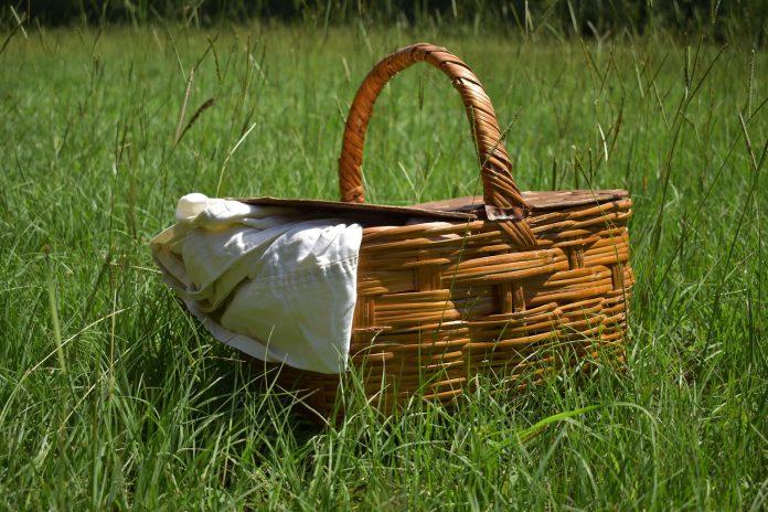 Piknik w Ostromecku - Kosz piknikowy Ostromecko